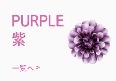 色で選ぶ紫色の髪飾り